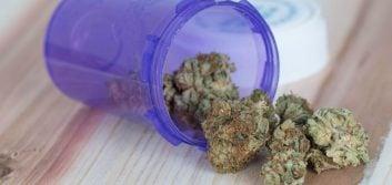 Defer to states on marijuana, data privacy, legislators tell Congress