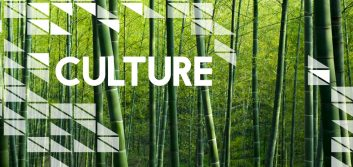 Why culture is critical to your success