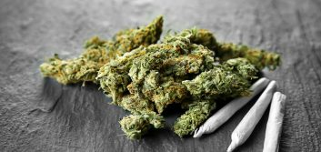 Employee marijuana use: Is your organization prepared?