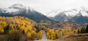 3 ways to have COVID-free fun this fall
