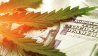 Cannabis lending doesn't necessarily mean higher credit risk