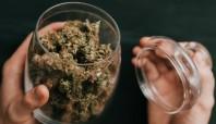 NAFCU talks marijuana banking landscape with state AGs, regulators