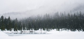 What are you doing to prepare for an economic winter?