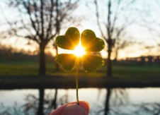 CUs – the four-leaf clovers in the financial service industry