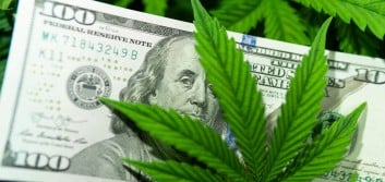 NCUA imposes marijuana-related cease and desist order