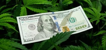 Making your mark in cannabis banking