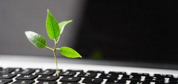 Digital is not always green: 5 ways to be environmentally responsible in the digital space