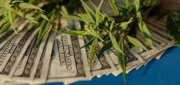 Questions to ponder before entering the cannabis banking marketplace