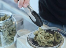 Cannabis banking myths and misconceptions