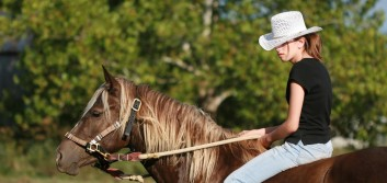 Take the reins of your own learning